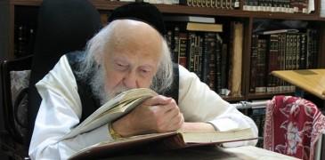 640px-Rabbi_Yosef_Shalom_Elyashiv