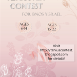 Tznius Art Contest 2015
