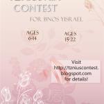 Tznius Art Contest